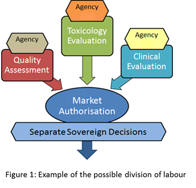 This image demonstrates an example of the possible division of labour for a working-sharing submission. Here, an identical dossier is used across all jurisdictions and each agency is allocated a module(s) to evaluate. The information from the evaluation process is shared between the partners, and this allows each partner to make their own sovereign decision regarding the approval of the medicine to market.