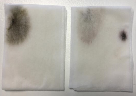 Wipes showing apparent mould contamination