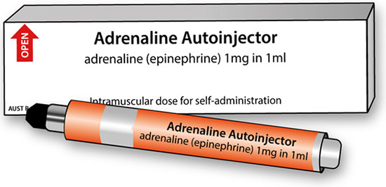 Image showing an example of packaging and labelling of Adrenaline products