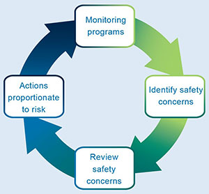 Post-market monitoring cycle: Monitor programs; Identify safety concerns; Review safety concerns; Actions proportionate to risk.